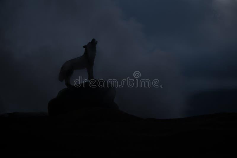 Silueta del lobo del grito contra fondo de niebla entonado oscuro Concepto del horror de Víspera de Todos los Santos imágenes de archivo libres de regalías