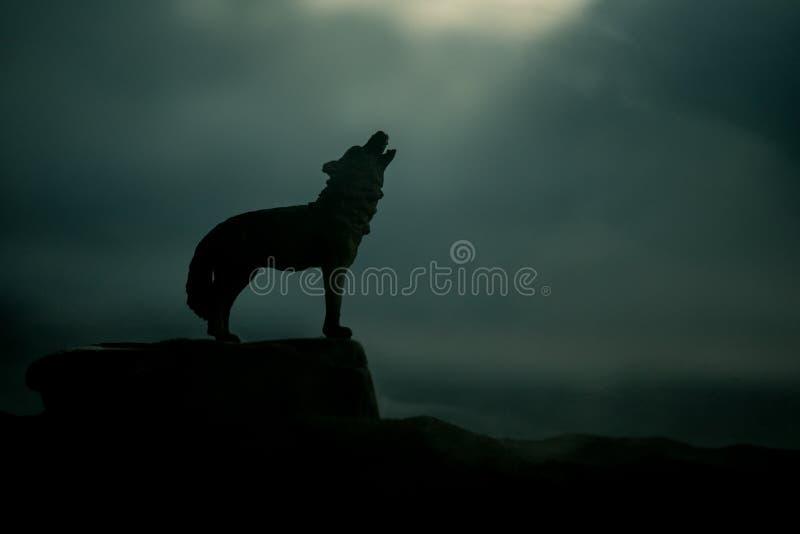 Silueta del lobo del grito contra fondo de niebla entonado oscuro Concepto del horror de V?spera de Todos los Santos fotos de archivo libres de regalías