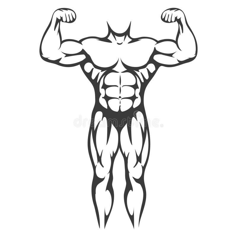 Silueta Del Negro Del Músculo Del Cuerpo Masculino Ilustración del ...