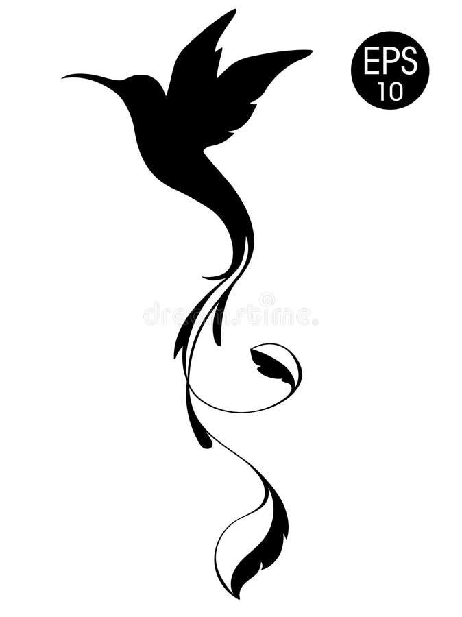 Silueta del pájaro de Colibri Ejemplo negro del vector del colibrí exótico del vuelo aislado en el fondo blanco libre illustration