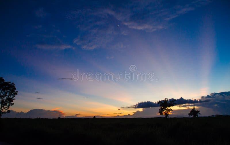 Silueta del pasto con un fondo colorido de la puesta del sol imagenes de archivo