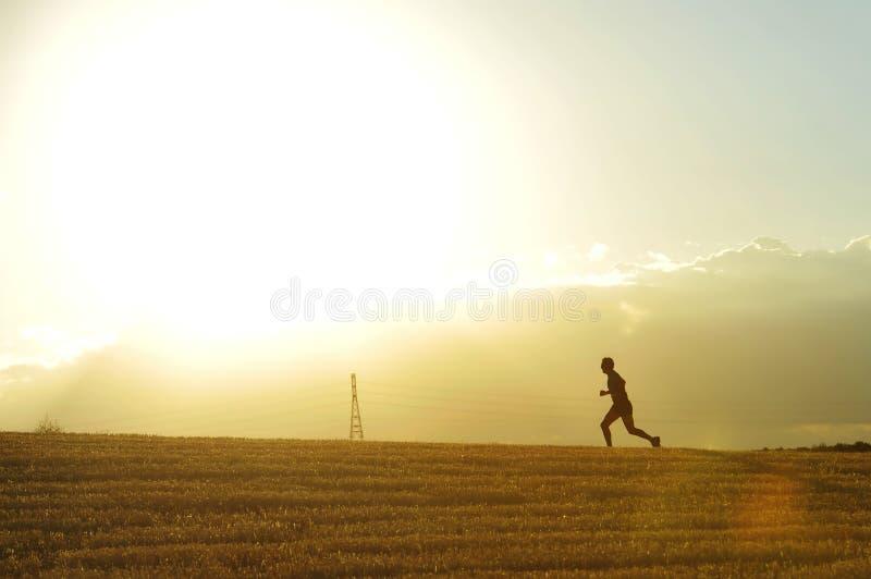 Silueta del perfil del hombre joven que corre en disciplina que activa del campo a través del entrenamiento del campo en puesta d imágenes de archivo libres de regalías
