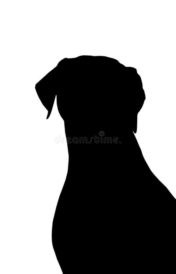 Silueta del perro. foto de archivo