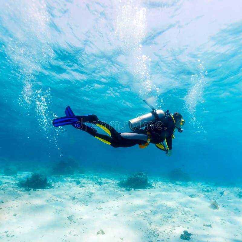 Silueta del zambullidor de equipo de submarinismo cerca de la parte inferior de mar fotos de archivo