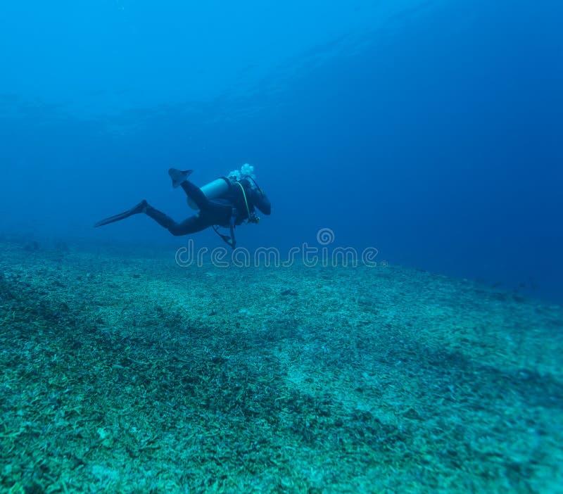 Silueta del zambullidor de equipo de submarinismo cerca de la parte inferior de mar fotografía de archivo