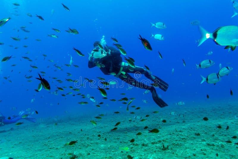 Silueta del zambullidor de equipo de submarinismo cerca de la parte inferior de mar foto de archivo libre de regalías