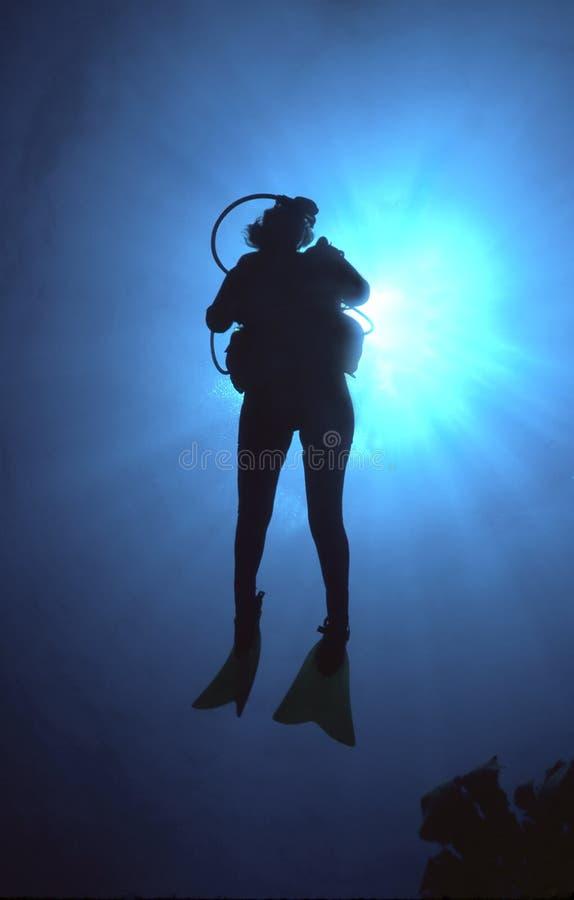 Silueta del zambullidor de equipo de submarinismo de la mujer foto de archivo