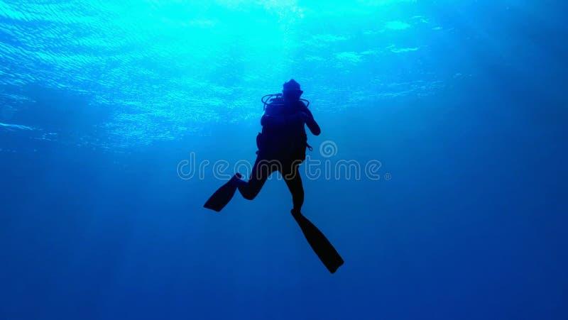 Silueta del zambullidor de equipo de submarinismo fotos de archivo