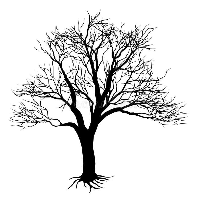 Silueta descubierta del árbol stock de ilustración