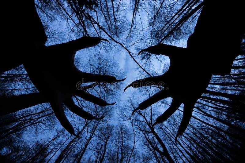 silueta fantasmal en el concepto oscuro fantasmagórico de Halloween del bosque fotografía de archivo libre de regalías