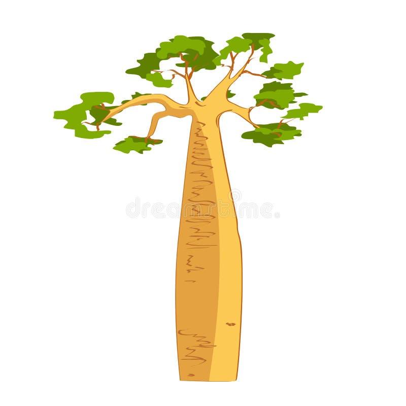 Silueta hermosa del árbol del baobab stock de ilustración