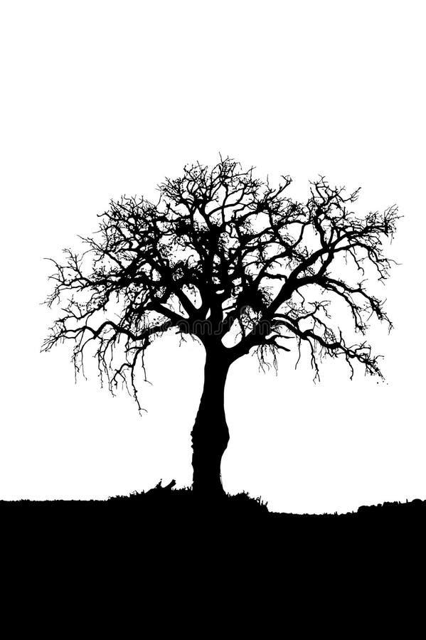 Silueta muerta del árbol stock de ilustración