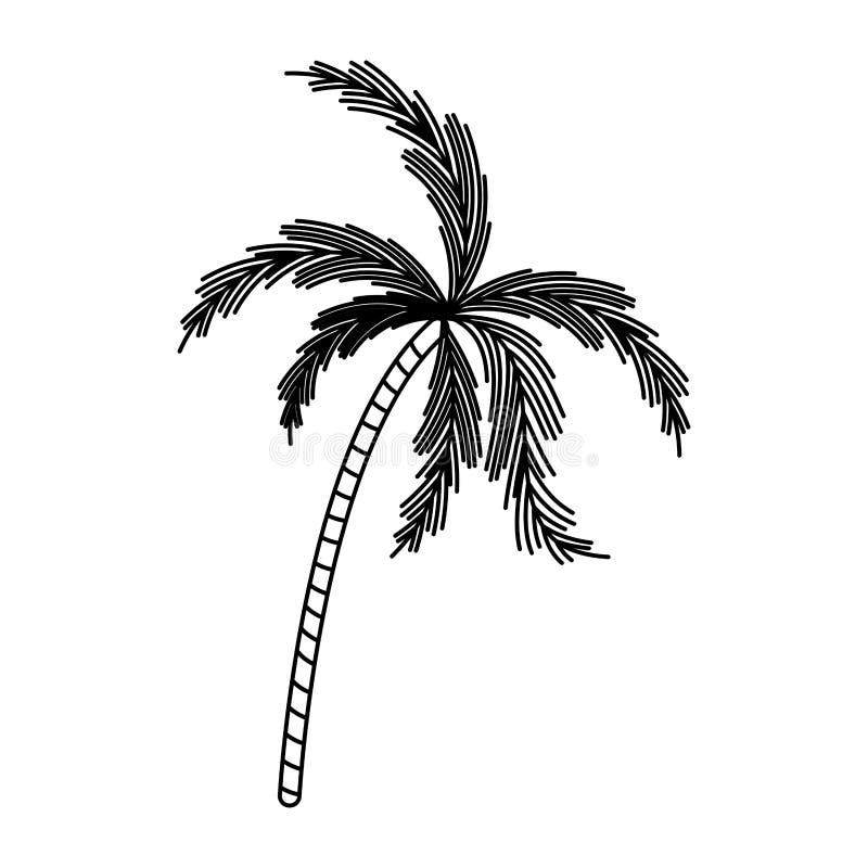 Silueta negra con la palmera stock de ilustración