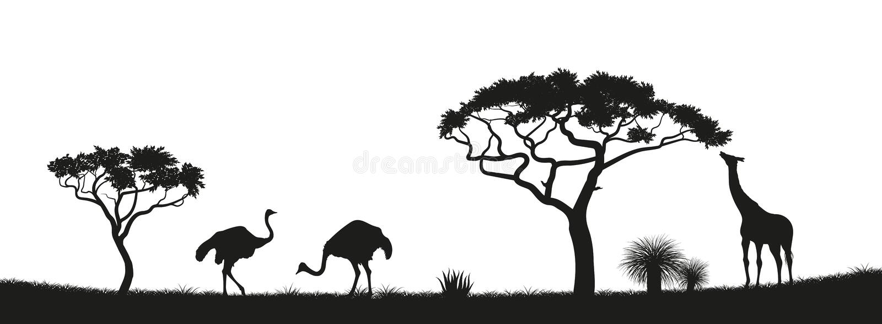 Silueta negra de la avestruz, jirafa en sabana Animales de África Paisaje africano Panorama de la naturaleza salvaje stock de ilustración