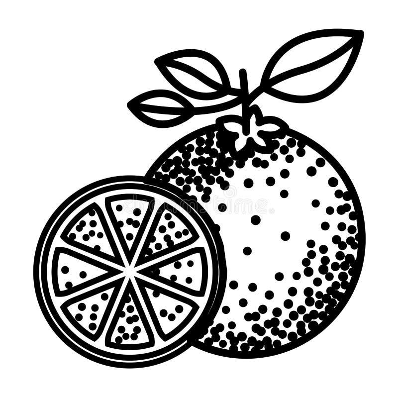 Silueta negra de la fruta anaranjada stock de ilustración