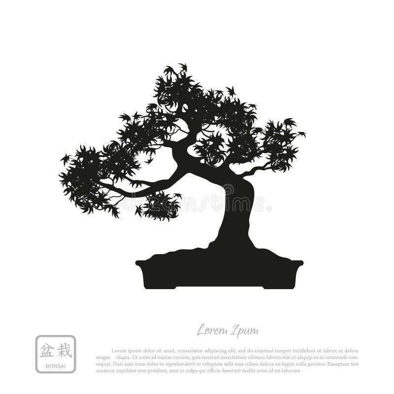 Silueta negra de un bonsai en un fondo blanco Ima detallado ilustración del vector