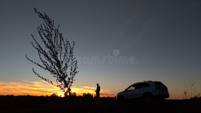 Silueta negra de una planta, de un hombre y de un coche en el fondo de una puesta del sol y de un cielo azul imagenes de archivo