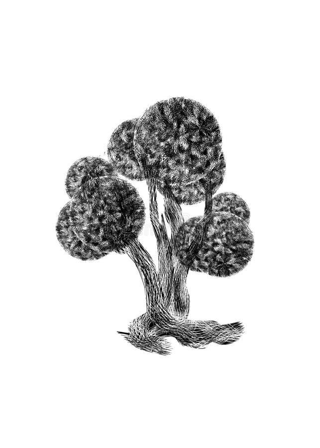 Silueta negra del árbol extraño de hadas del boj aislado en el fondo blanco libre illustration