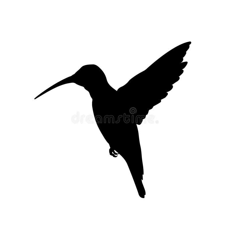 Silueta negra del colibri Imagen aislada del pájaro del tarareo en el fondo blanco Animal de Norteamérica stock de ilustración