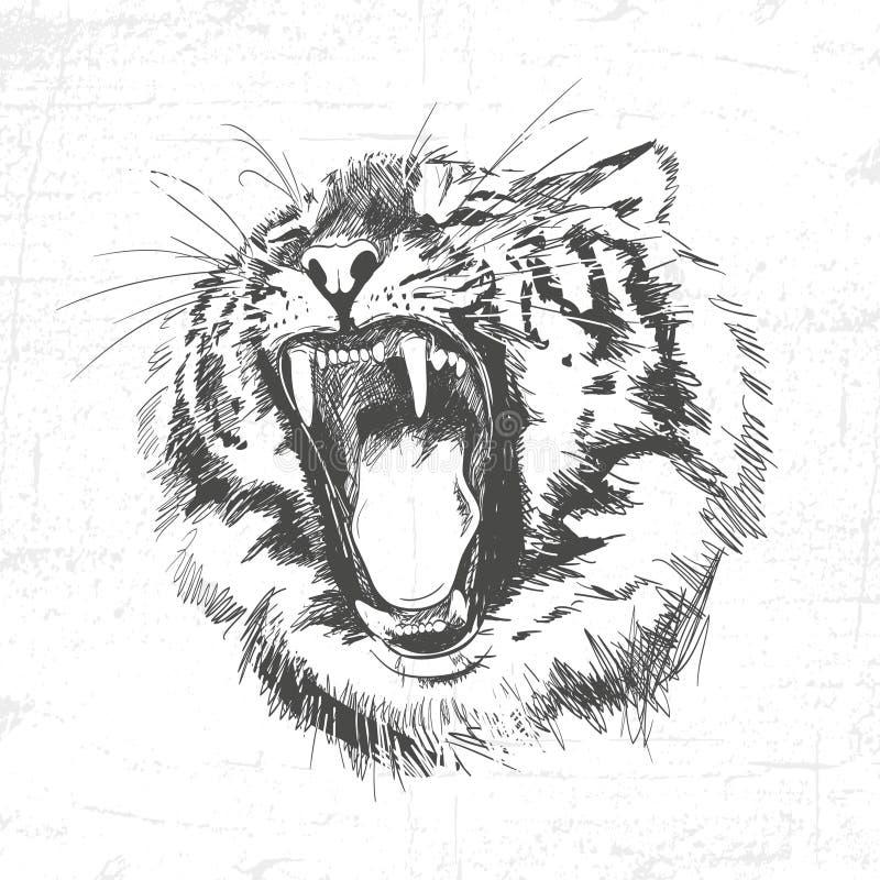 Silueta principal del tigre - ejemplo del vector aislado en el fondo blanco libre illustration