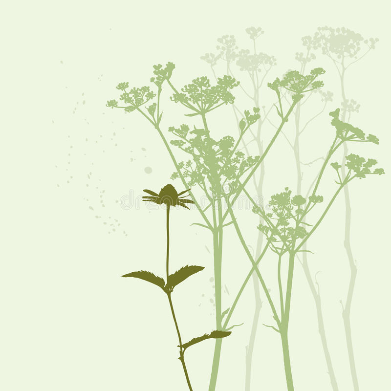 Silueta verdadera de la hierba libre illustration