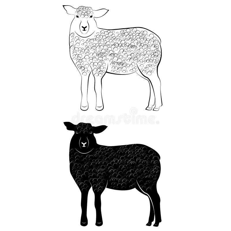 Silueta y esquema de las ovejas stock de ilustración
