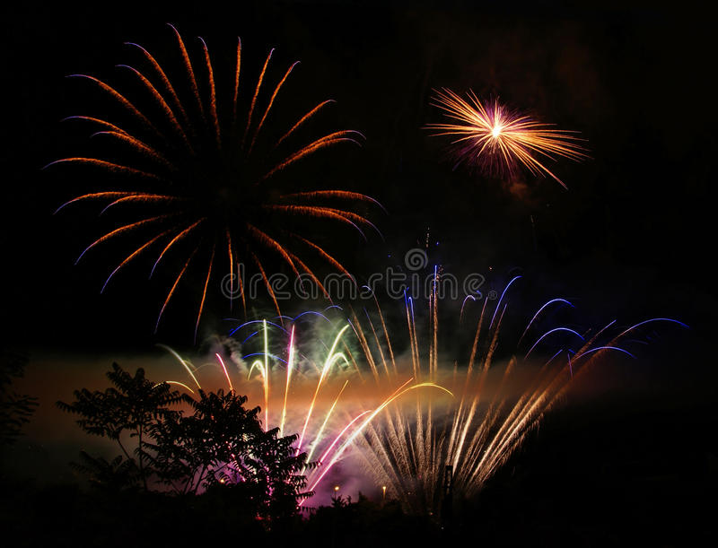 Silueta y fuegos artificiales del árbol fotos de archivo libres de regalías