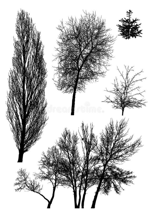 Siluetas de árboles   stock de ilustración