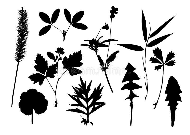 Siluetas de hojas stock de ilustración