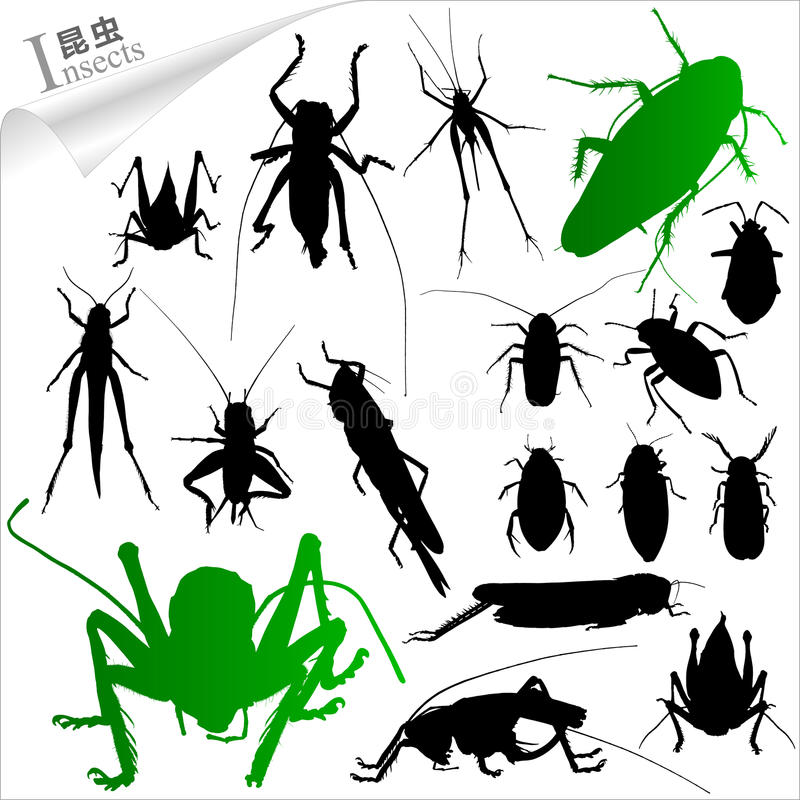 Siluetas de insectos stock de ilustración