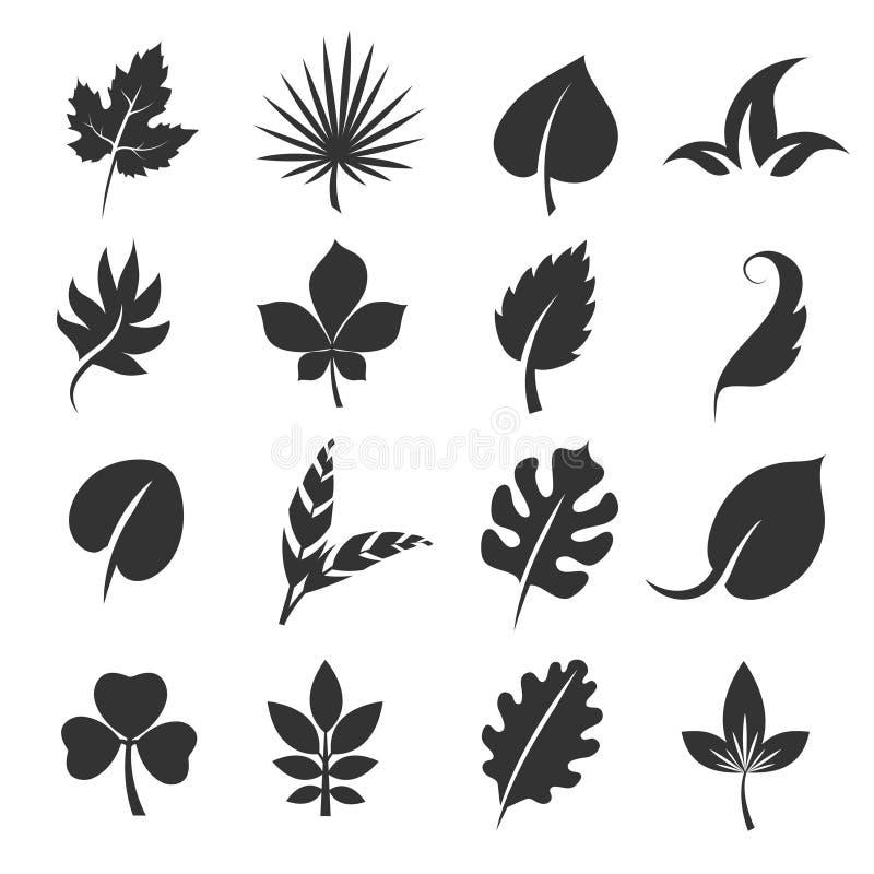 Siluetas de la hoja del árbol Ejemplo del vector de las hojas en el fondo blanco stock de ilustración