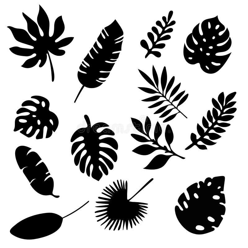 Siluetas de las hojas de palma fijadas aisladas en el fondo blanco Sistema de elementos tropical de la silueta de la hoja aislado stock de ilustración