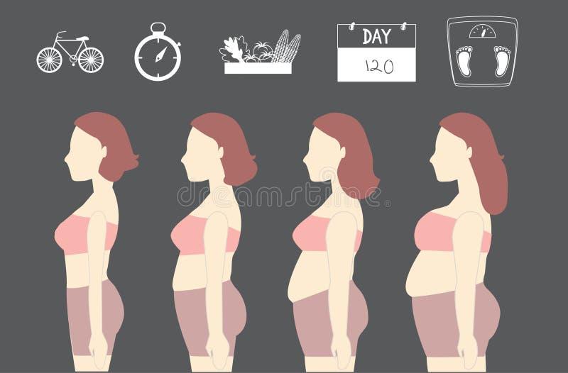 Siluetas de las mujeres que pierden el peso, ejemplos ilustración del vector