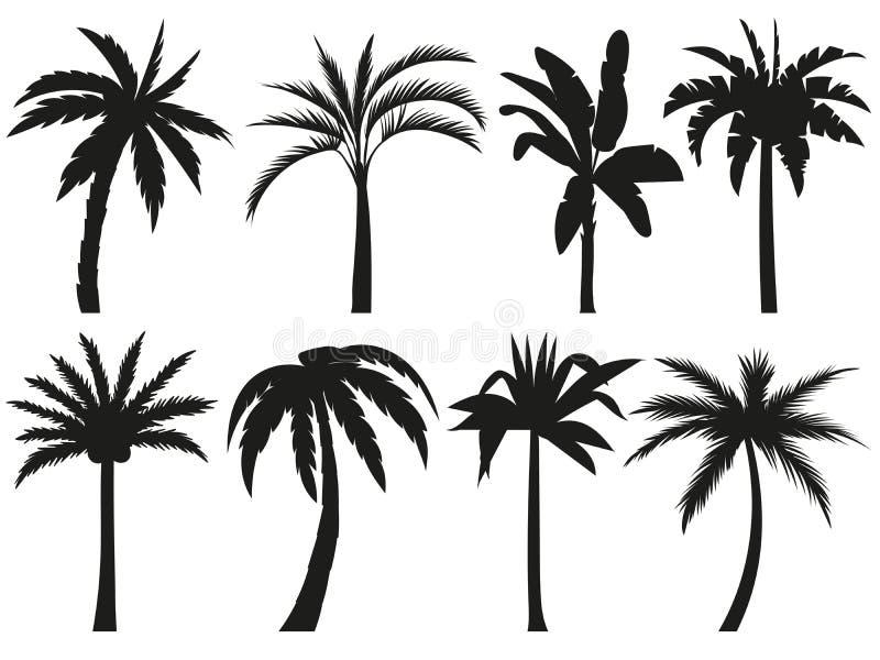 Siluetas de las palmeras Hojas tropicales, árbol de palmas retro y sistema del ejemplo del vector de las siluetas del vintage stock de ilustración