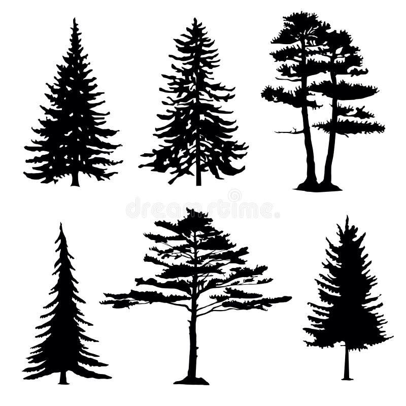 Siluetas de los árboles coníferos, colección libre illustration