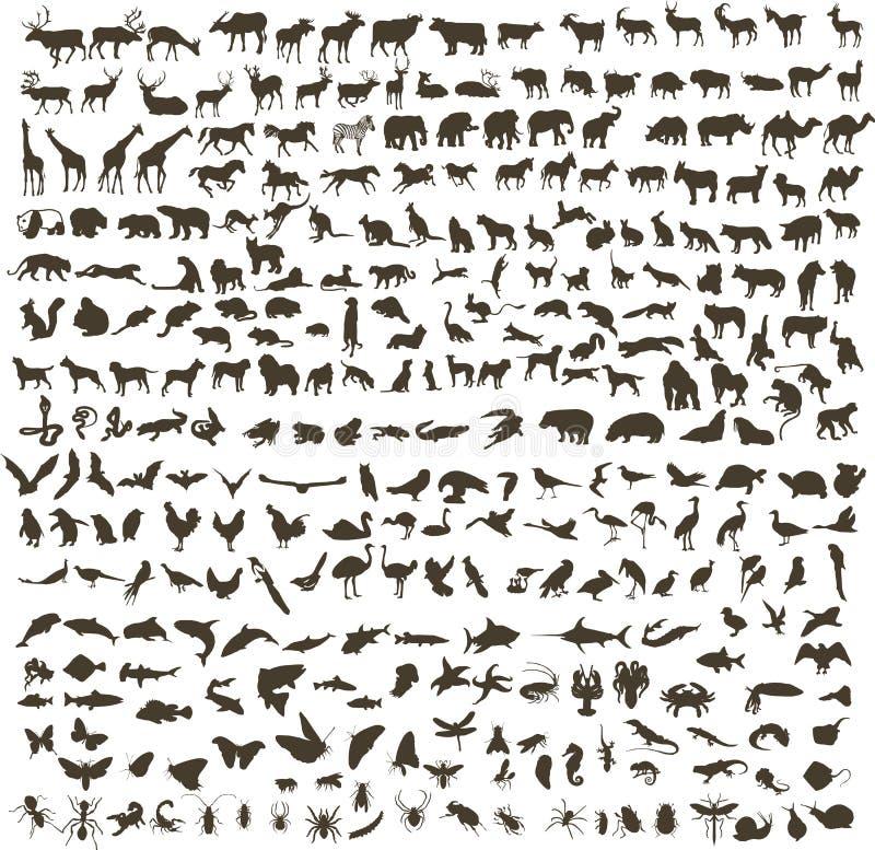 Siluetas de los animales libre illustration