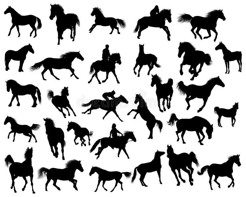 Siluetas de los caballos stock de ilustración