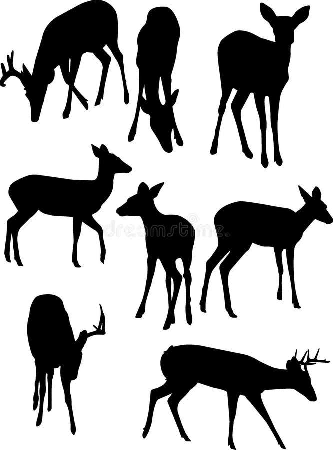 Siluetas de los ciervos