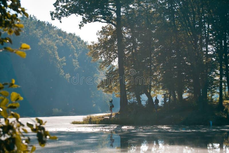 Siluetas de los pescadores en un banco de poco lago natural en el bosque, salida del sol hermosa del verano de la mañana de niebl imágenes de archivo libres de regalías