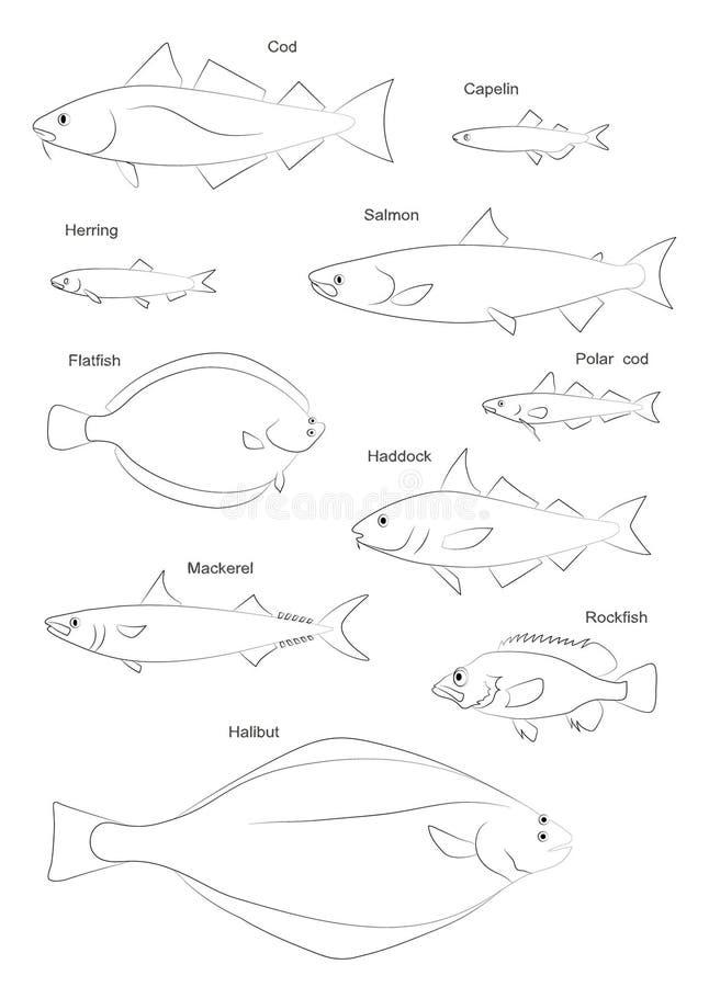 Siluetas de los pescados de Atlántico Norte Sistema de imágenes del vector stock de ilustración