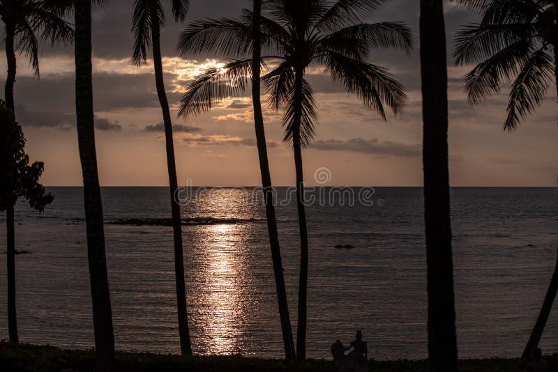 Siluetas de palmeras en una puesta del sol sobre el Océano Pacífico, isla grande, Hawaii foto de archivo