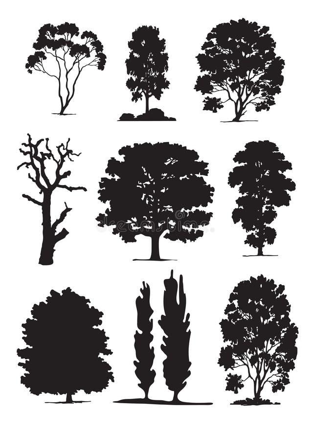 Siluetas del árbol (vector) ilustración del vector