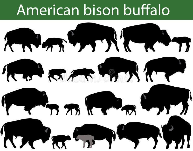 Siluetas del búfalo del bisonte americano libre illustration