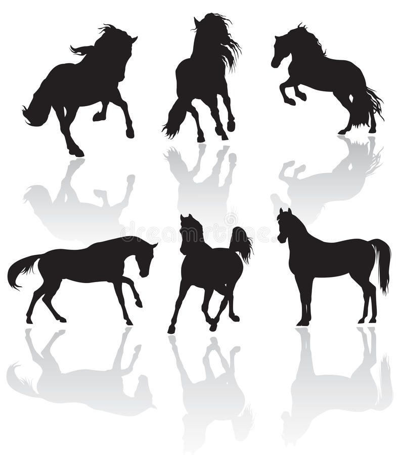 Siluetas del caballo del vector stock de ilustración