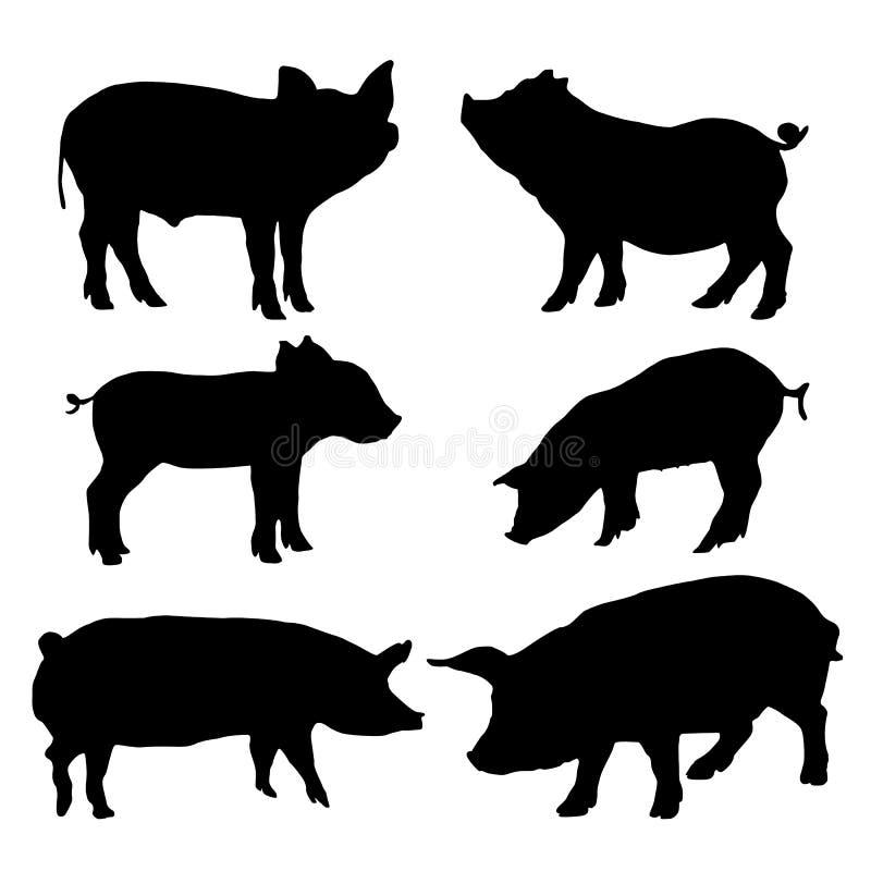 Siluetas del cerdo fijadas Ilustración del vector fotografía de archivo
