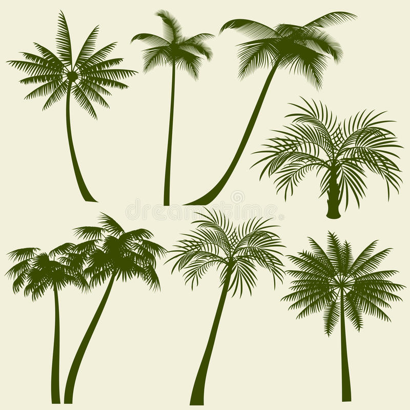 Siluetas del vector de la palmera de las vacaciones de verano libre illustration