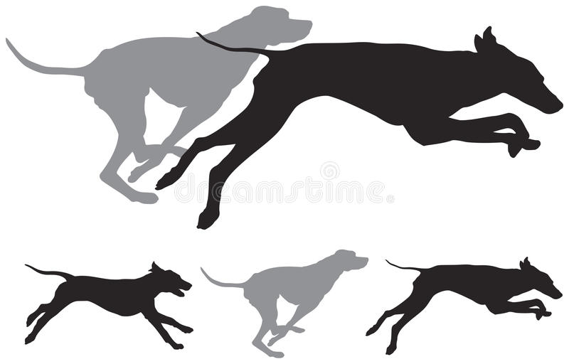 Siluetas del vector del funcionamiento de los perros de caza stock de ilustración