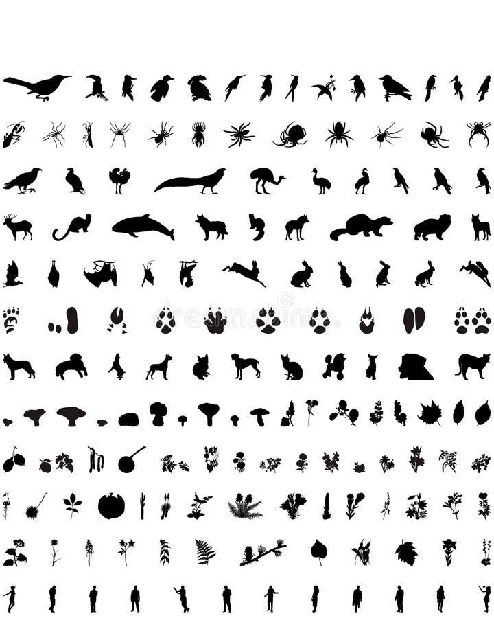 Siluetas del vector fijadas. Conjunto # 5 libre illustration