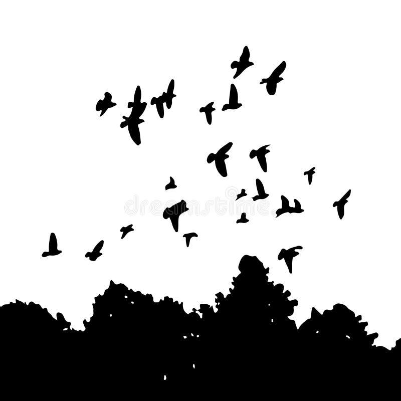 Siluetas negras de una multitud de las palomas (Columba Livia) que vuelan sobre los árboles stock de ilustración