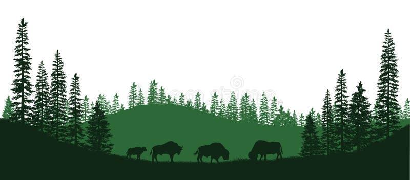 Siluetas negras del bisonte americano Panorama natural de los animales del bosque Paisaje aislado Escena de la fauna ilustración del vector
